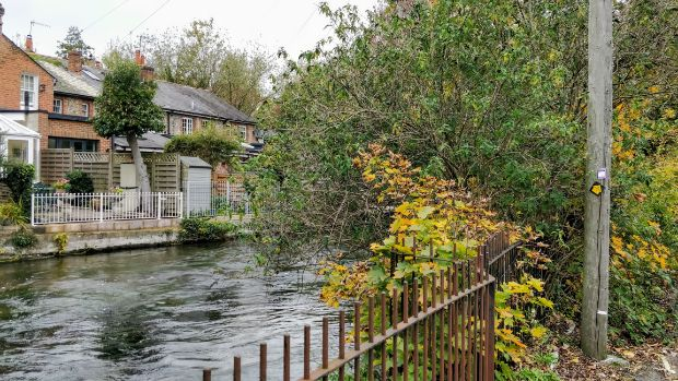 Fast-flowing river Itchen with views of houses and bushes with autumnal coloursat Water Lane