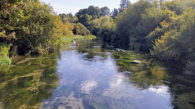 Clear water of the River Itchen with trees on each bank beginning autumnal colours