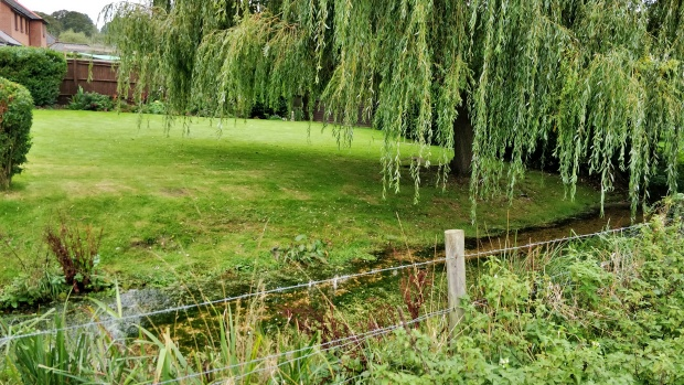 Itchen Way runs parallel to the River Itchen near New Cheriton. River, and manicured lawn with weeping willow tree